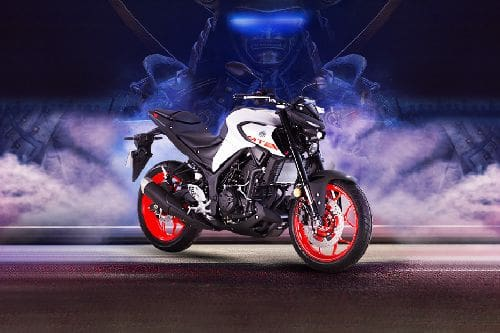 Yamaha MT-25 Slant Rear View Full Image